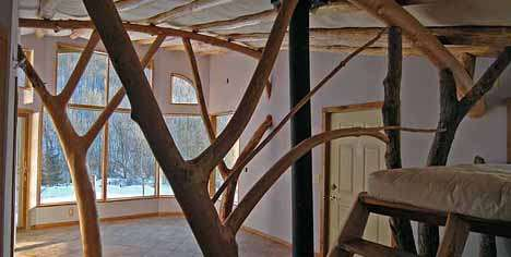 Arboreal Abodes