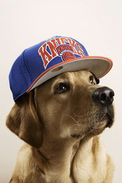 'Dogs With Caps' Captures Fashionably Adorable Canines