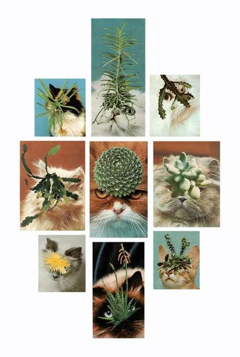 Cat Cactus Collages