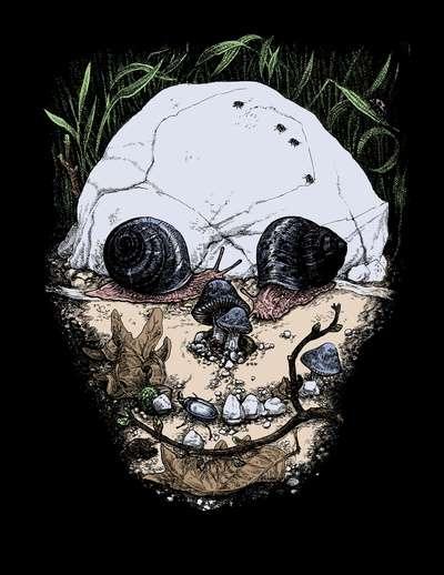 Skull-Obsessed Illustrations