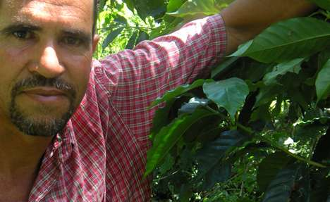 Global Farmers' Markets - Liga Masiva Lets You Buy Coffee Straight from the Source