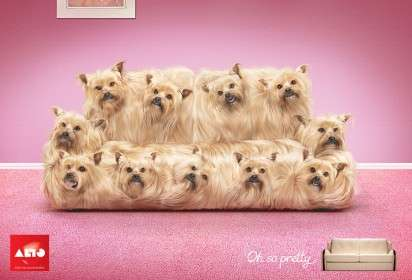 Cute Pouch Couches