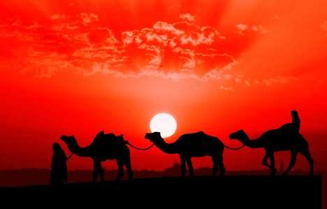 Astounding Arabian Sunset Shots