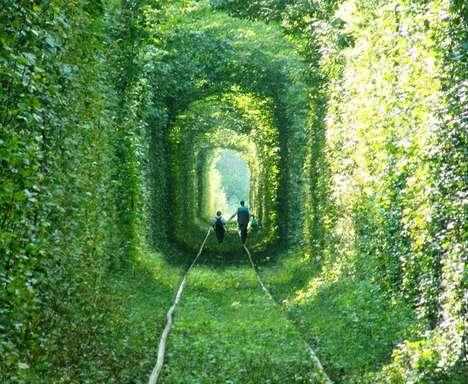 Greenery-Enclosed Walkways
