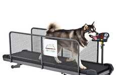 Dashing Doggy Exercise Gear - Give Your Dog a Workout Too With the Fit Fur Life Treadmill