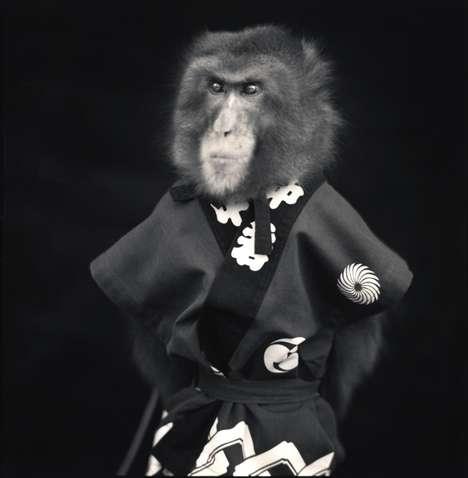 Japanese Primate Portraits (UPDATE)