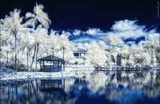 Infrared Snow Scenes