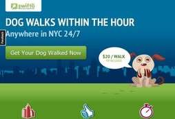 Speedy Dog Walking Services - Swifto Sends Dog Walkers to NYC Doors Within 60 Minutes