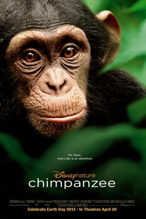 Ape Fundraising Films - The Disney Chimpanzee Movie Helps the Jane Goodall Foundation