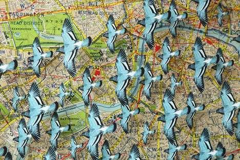 Avian Cartographic Boxes