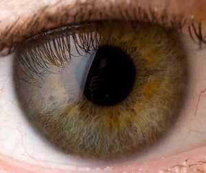 Digital Watermarking Via Eye