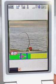 Catch A Virtual Fish and Eat It In Real Life