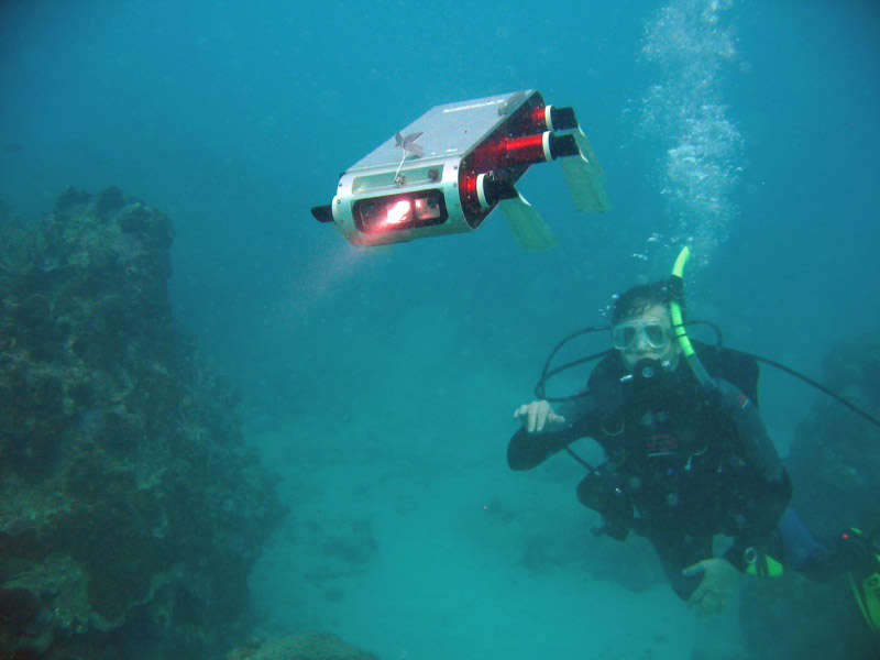 Amphibious Robot That Swims