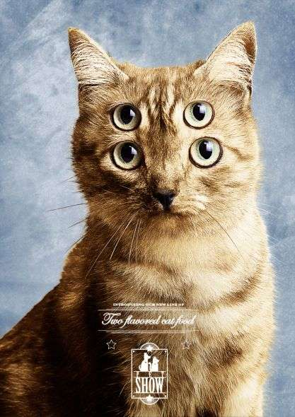 Double-Eyed Cat Campaigns - The Pet Show Pet Food Ads by Hermandad are Dizzying