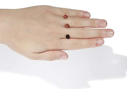 Half-Finished Rings - This Accessory from the Pigr Shop is Endearing