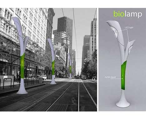 17 Eco Street Light Concepts