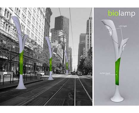 17 Eco Street Light Concepts