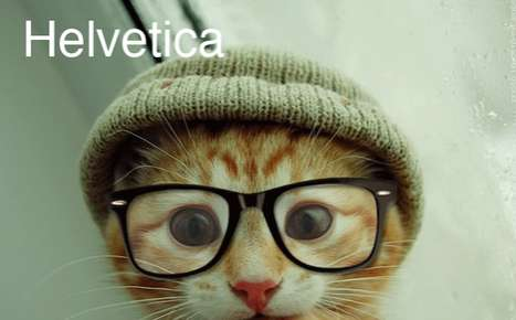 Kitty-Inspired Fonts