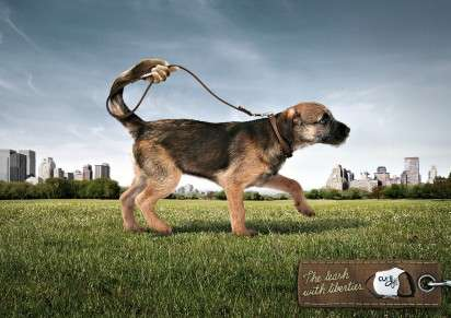 Hand-Shaped Tail Ads - The Curli Leash Campaign Shows Dogs Walking Themselves