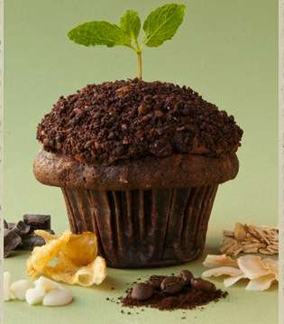 These Compost Cupcakes are for Chocolate-Lovers with Green Thumbs