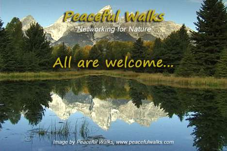 Nature Video Networking - 'Peaceful Walks' Promotes Environmental Causes