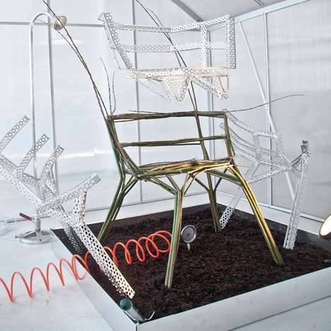 Grow-Your-Own Furniture