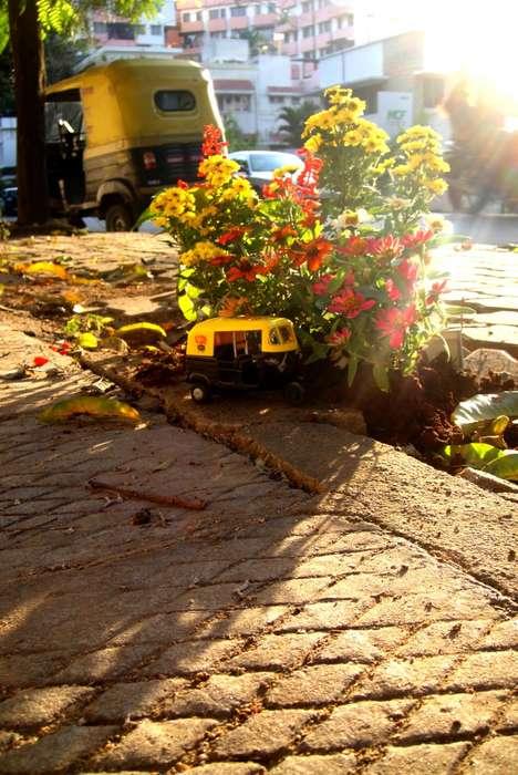 Street-Mending Flower Pits