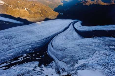 Frozen Planet Photography