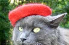 Feline Fedoras - Cat French Berets by Amelie Segarceanu Will Style Up Kitty