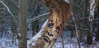 Grimacing Tree Graffiti