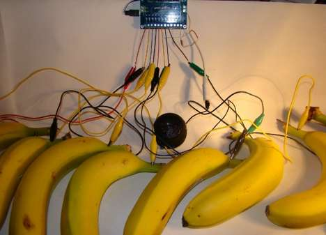 Appealing Fruit Instruments