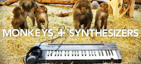 DJing Monkey Marketing