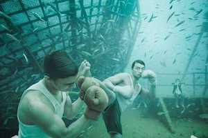 Underwater Persuasion