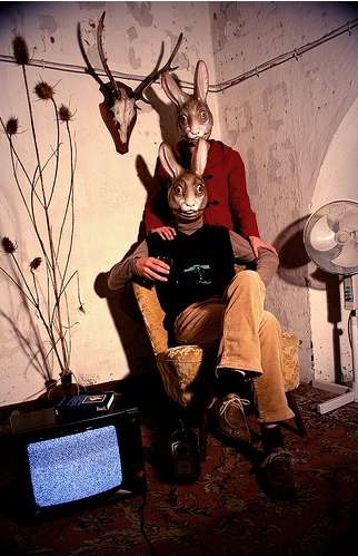 The Mark Kelty 'Scary Bunnies' Pinterest Features Frightening Critters