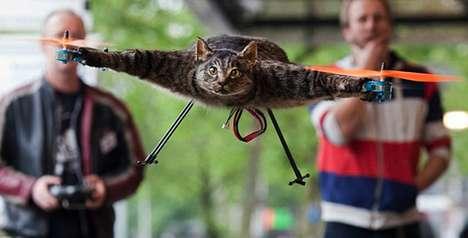 Flying Feline Helicopters