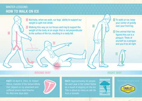Fatal Ice Fall Charts