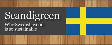 Eco Wood Logging Infographics
