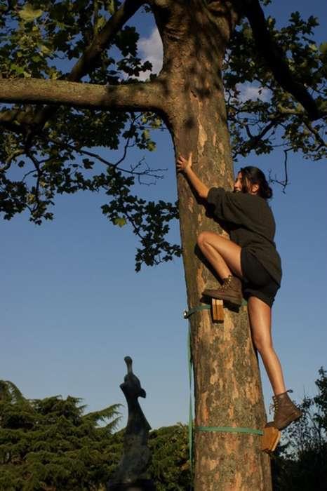 Tree-Climbing Tools