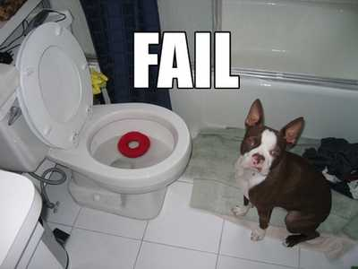 The Next LOLCats? - Fail Dog
