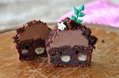 Spud Concealing Cakes - These Sweet Potato Chocolate Cupcakes are for Gardeners with a Sweet Tooth