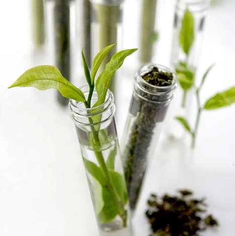 Laboratory Tea Leaf Flasks