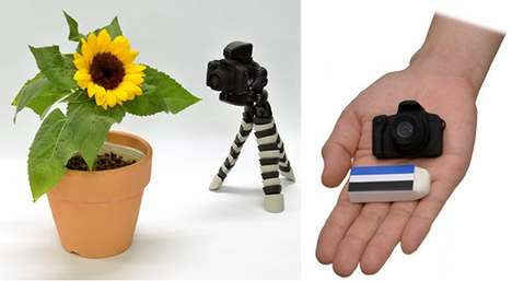 Miniature Timelapse Cameras