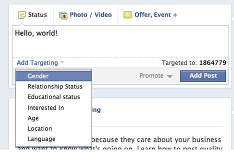 Hyper-Targeting Social Add-Ons - Facebook Brand Pages Can Now Target by Gender, Workplace & More