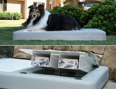 Ice-Cold Canine Cots