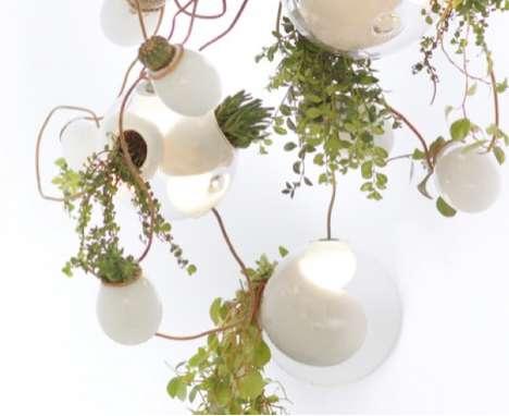 Illuminated Garden Fixtures