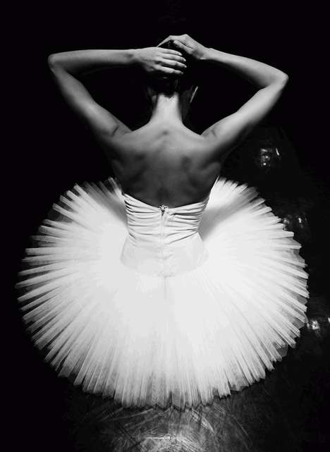 Eloquent Ballerina Photography