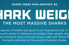 Fierce Aquatic Creature Infographics - The Shark Week: The Most Massive Sharks Graphic Gets Visual