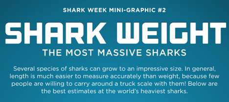 The Shark Week: The Most Massive Sharks Graphic Gets Visual