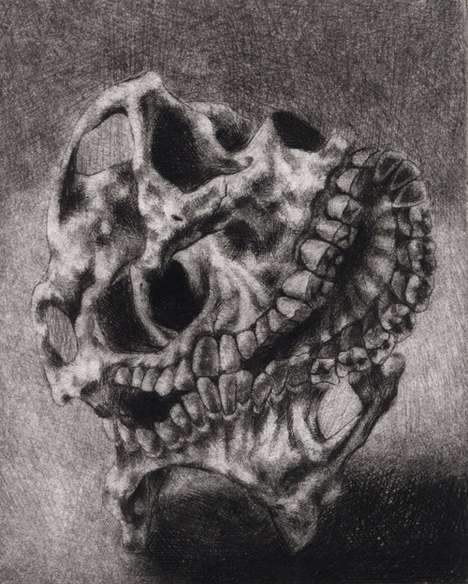 Mutated Skull Drawings - Clara Lieu Depicts Craniums with Multiple Jaws