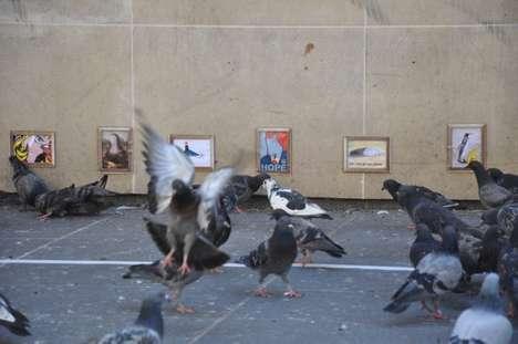 Bird-Centric Art Galleries
